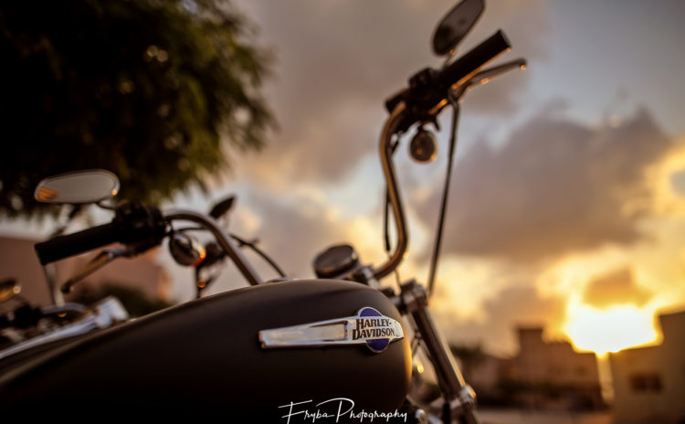 Harley-Davidson-Sunset-detail